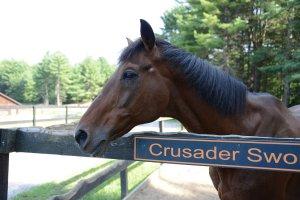Crusader Sword - photo by Laura Battles